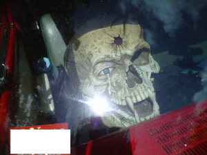 front view of skull with sunlight
